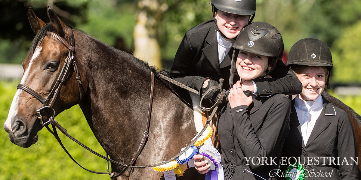 Riding Lessons Horses Summer Camps Equestrian Riding
